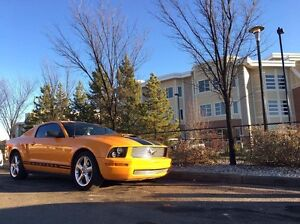 2008 Ford Mustang!!!