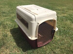 Dog kennel / approved for plane travel Windella Maitland Area Preview