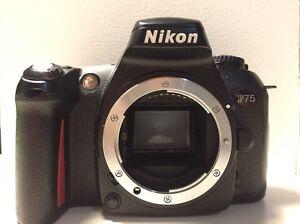 NIKON F75 35mm CAMERA Newtown Inner Sydney Preview
