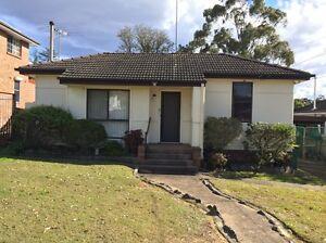 House for lease Dundas Valley Parramatta Area Preview