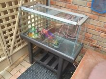 Fish tank / reptile tank Carrum Downs Frankston Area Preview