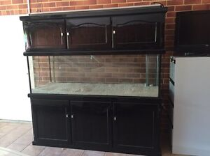 SALT WATER FISH TANK Beeliar Cockburn Area Preview