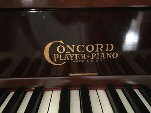 Pianola - Concord Player Piano Elderslie Camden Area Preview
