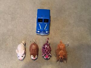 Zhuzhu pets. Carlingford The Hills District Preview