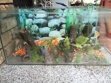 Fish tank and accessories Huntingdale Gosnells Area Preview