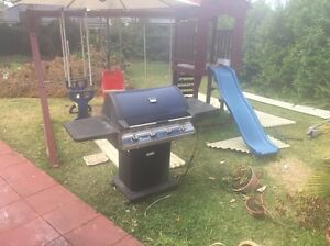 Beef master deluxe Gas bbq with stand and side burner Strathfield Strathfield Area Preview