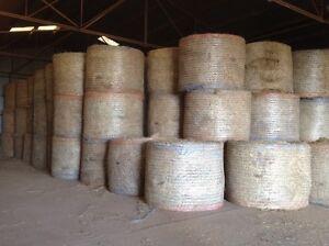 Round Hay Bales Yellingbo Yarra Ranges Preview
