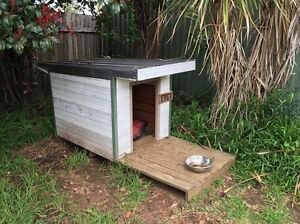 Dog kennel Narwee Canterbury Area Preview