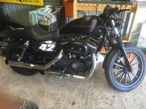 2010 Harley Davidson 883 iron 9000kms open to swaps Sailors Gully Bendigo City Preview
