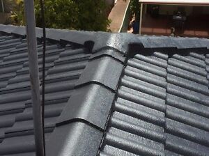 Roof painting and cleaning service, free quote St Clair Penrith Area Preview