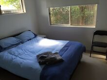 Free accommodation for backpackers for garden work Noosaville Noosa Area Preview