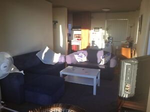 Female flatmate for 4-10 weeks, Coogee Coogee Eastern Suburbs Preview