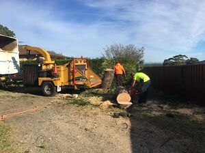 Wood chipper for hire South Granville Parramatta Area Preview