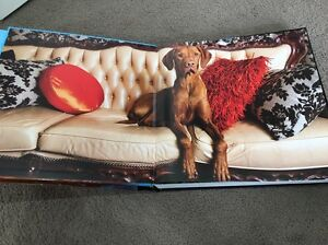 WOOF coffee table book / gift Wheelers Hill Monash Area Preview