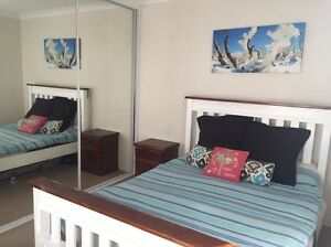 One bed avail in Coogee until 2nd Jan Coogee Eastern Suburbs Preview