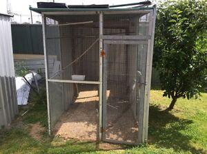 Bird Avery and six cockatiels. Need gone asap Karabar Queanbeyan Area Preview