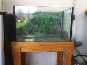 1 Ft fish tank $90-100 North Melbourne Melbourne City Preview
