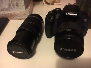 Canon EOS 650d Englorie Park Campbelltown Area Preview
