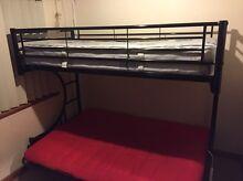 Double Futon Single Bunk Bed Adelaide CBD Adelaide City Preview
