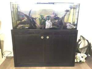 4ft tank, stand and goodies Wyongah Wyong Area Preview