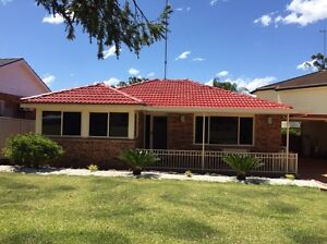 Roof painting and cleaning ,  Christmas special price Macquarie Fields Campbelltown Area Preview