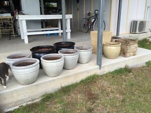 Eleven plant pots Red Hill Brisbane North West Preview
