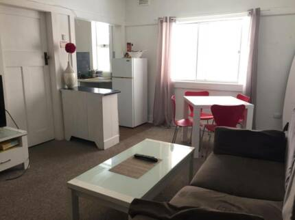Beautiful fully furnished apartment for rent