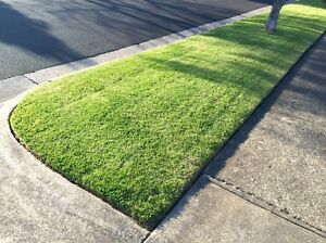 Rick's Garden Maintenance - Lawn Mow / Hedge Trim / Weed Spray Fawkner Moreland Area Preview