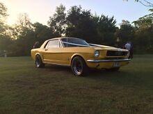 66 V8 Mustang Wynnum Brisbane South East Preview