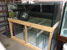 "Brand new tank 5ft x 750w x 20""h Prospect Blacktown Area Preview"