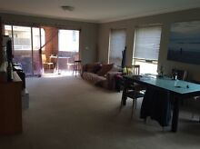 Dbl room, Redfern, no bills, 1 min from station 320 per week Redfern Inner Sydney Preview