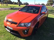 HSV Clubsport Maitland Maitland Area Preview