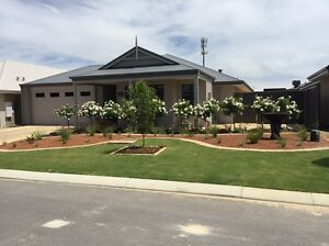 DUBYS LANDSCAPING & GARDENING Perth Perth City Area Preview