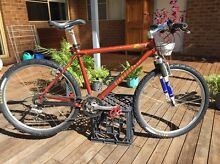 Diamond back mountain bike Mudgee Mudgee Area Preview