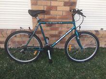 Malvernstar mountain bike Maitland Maitland Area Preview