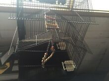 Bird cages and perch Glenroy Moreland Area Preview