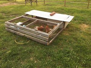 Chicken tractor/coop Plenty Nillumbik Area Preview