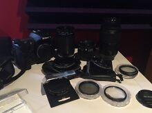 Nikon d300 Ingleburn Campbelltown Area Preview