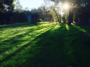 2x lush green quarter acre paddocks with a shelter in both From $100 Mundaring Mundaring Area Preview