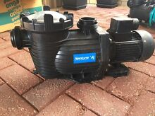 Neptune Pool Pump Newton Campbelltown Area Preview