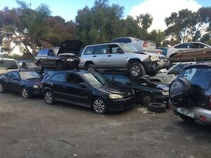 Cash 4 Cars, Vans, Utes, 4x4, Trucks. Para Hills West Salisbury Area Preview
