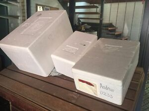 Free foam cooler boxes x3 Winston Hills Parramatta Area Preview