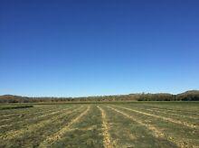 Rhodes grass hay Kununurra East Kimberley Area Preview