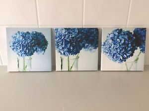 Set of three beautiful canvas flower pictures Butler Wanneroo Area Preview
