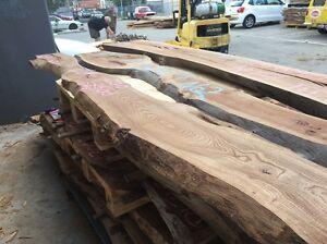 Elm timber slabs avenue trees city of Melbourne plt 11