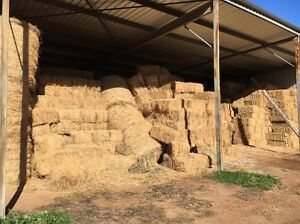 Lucerne Hay Square Bales 2nd Grade Wybong Muswellbrook Area Preview