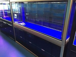 2m massive fish tank complete with sump n high end LEDs. $2800 Adelaide CBD Adelaide City Preview