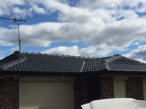 Roof painting Revesby Bankstown Area Preview