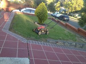 Domestic Lawn Mowing Service Seven Hills Blacktown Area Preview