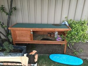 Rabbit/ guinea pig hatch $50 Ono Point Cook Wyndham Area Preview